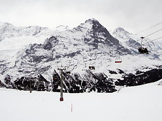 First Grindelwald